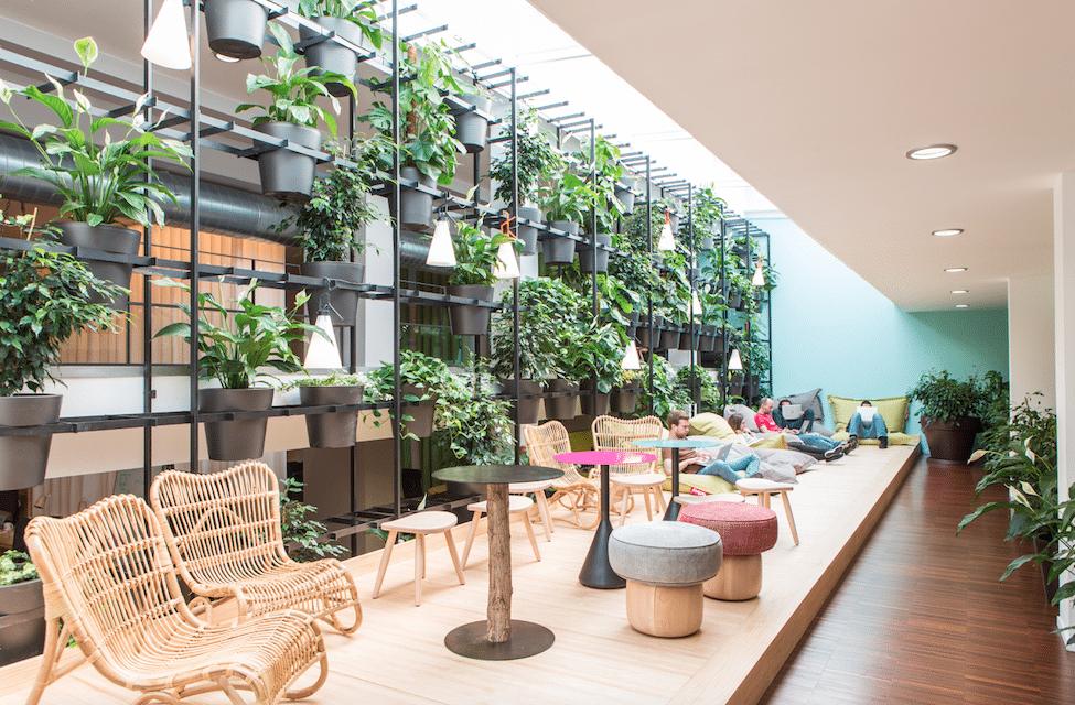 Typeform Headquarters: las plantas que amaban a las mujeres