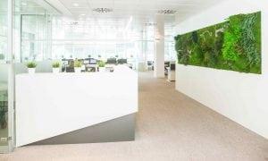 thomas-wellness-oficina-jardin-vertical-greenarea-contract-planta-preservada-(28)b-web