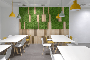 Mosswall - Boiserie and timber inserts