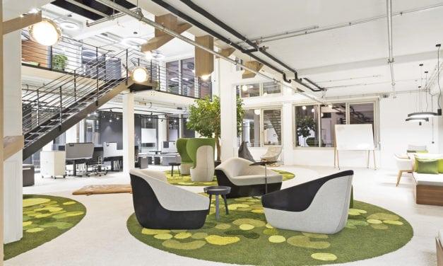 Proyecto Allianz Munich de CSMM: dentro del bosque