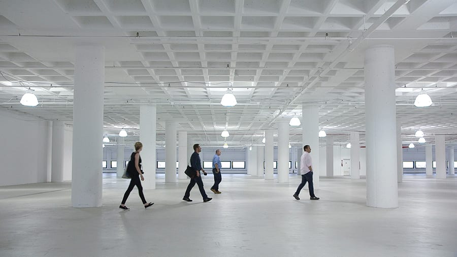 workplace Gary Hustwit