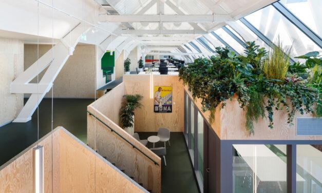 The Attic Rotterdam, proyecto de Johan de Wachter Architecten