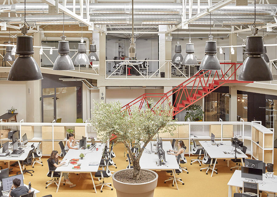 Oficina flexible Wayco Ruzafa Valencia, proyecto de José Costa